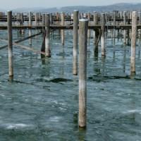 2012 03 10_Bodensee März 2012_1458