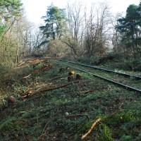02 2011-02-13 Eisenbahn Pfgst017-1