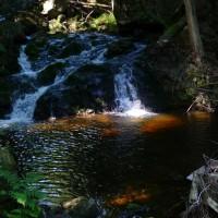 16 Harz 2010005