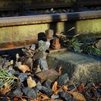 21 2011-02-13 Eisenbahn Pfgst011-1